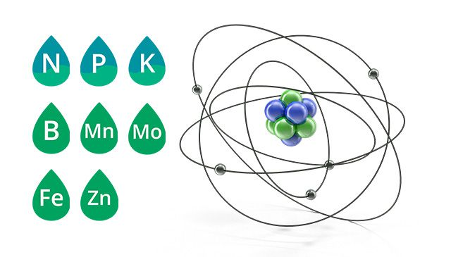 ALPINE Fortified Foliar Product Image Molecule