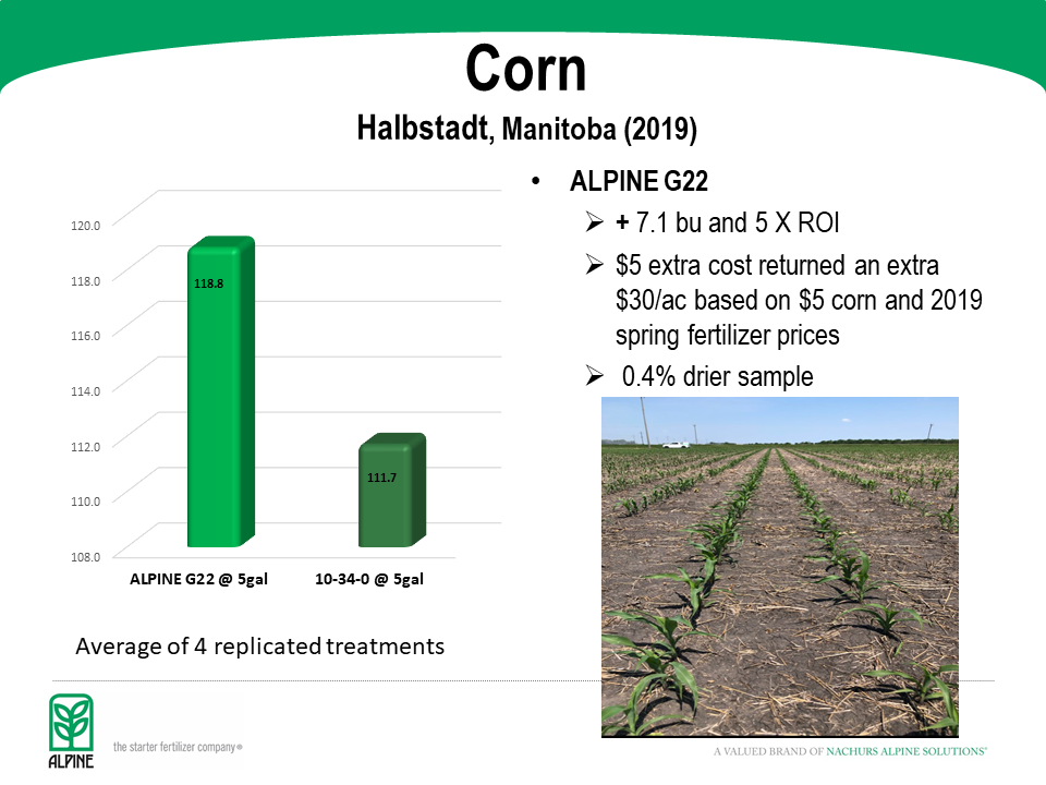 Halbstadt Corn Trial 2019 slides